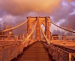 More bridge views, see Who's Who