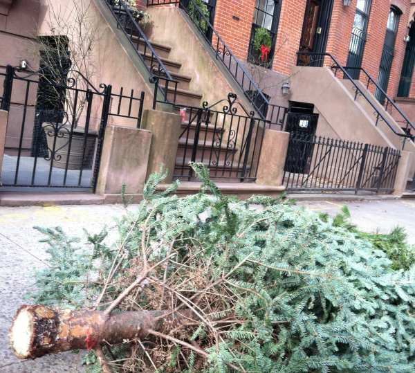 Twelfth Day or Not: When the New Year comes in, Christmas goes out. Call it the Mulch of Memory.
