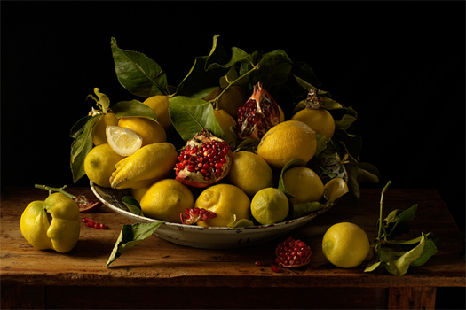 Paulette Tavormina: Natura Morta. Lemons and Pomegranates, after J.V.H., 2010. Robert Mann Gallery